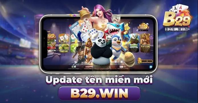 B29 win
